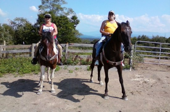 "Smoky Mountain Riding Stables : ""The ride of a Lifetime!"""