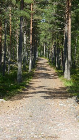 Aland Island, Finland: Remaining and intact road to the batteri
