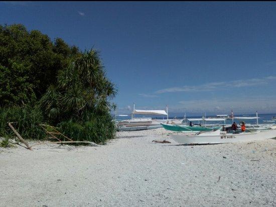 Balicasag Island, Filipina: IMG_20170926_213658_large.jpg