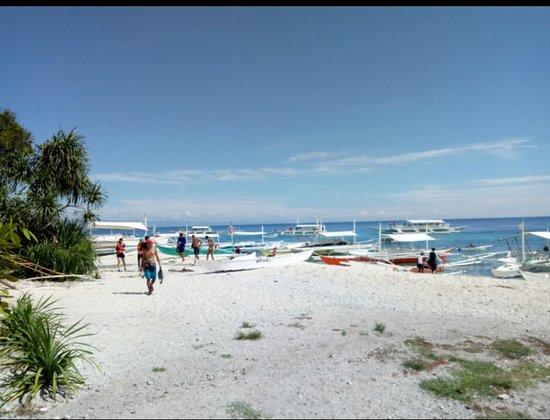 Balicasag Island, Filipina: IMG_20170926_213644_large.jpg