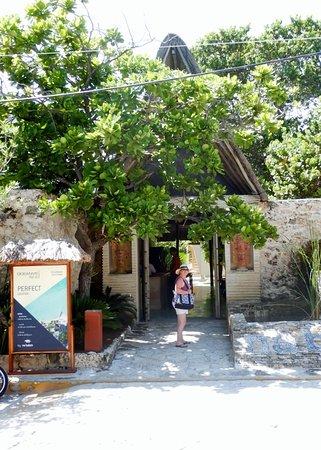 Na Balam Beach Hotel Photo