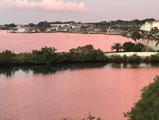Hudson, فلوريدا: sunset