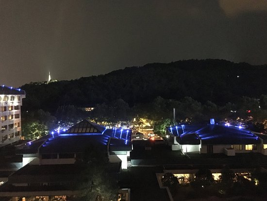 Dragon Hotel: Night view