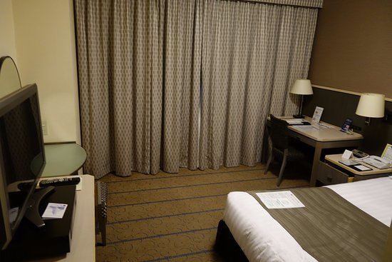 Shibuya Excel Hotel Tokyu Photo