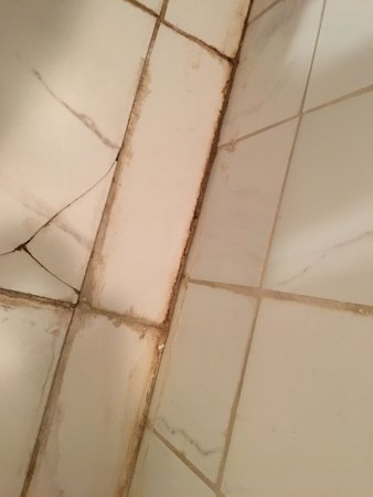 Dillsboro, Carolina del Norte: bathroom floor and wall grout