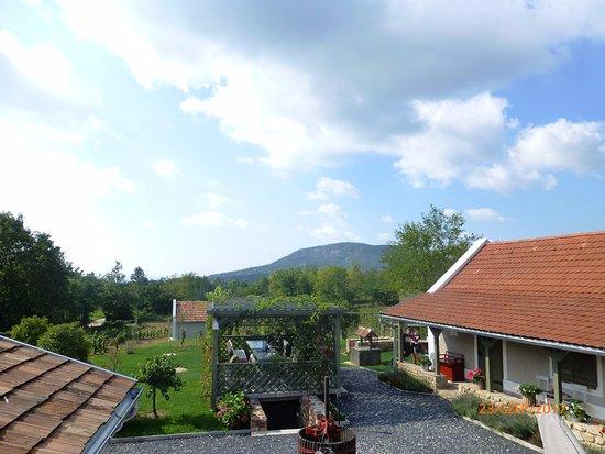 Badacsonyörs, Magyarország: A vendégház udvara, a borkóstolók helyszíne jó idő esetén.