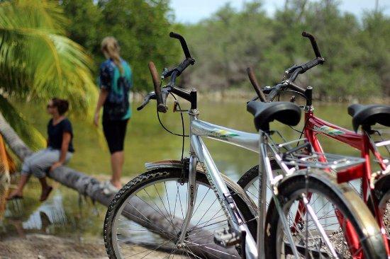Addu Atoll: Take a bike ride to explore the islands natural beauty