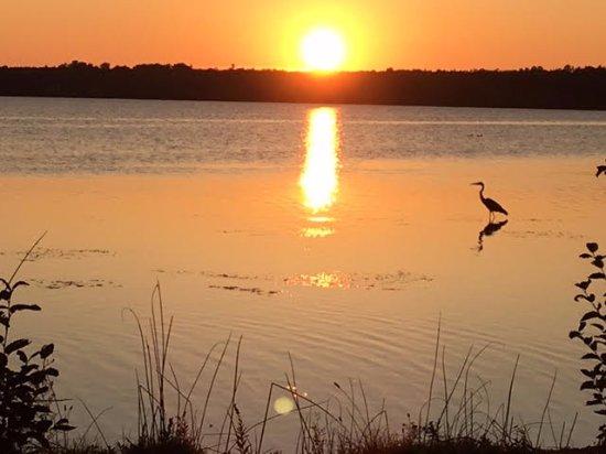 Trout Lake Foto