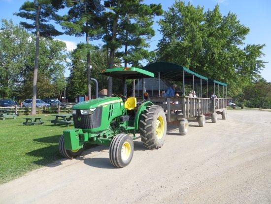 Shelburne, VT: Tracteur pour nous transporter à la ferme