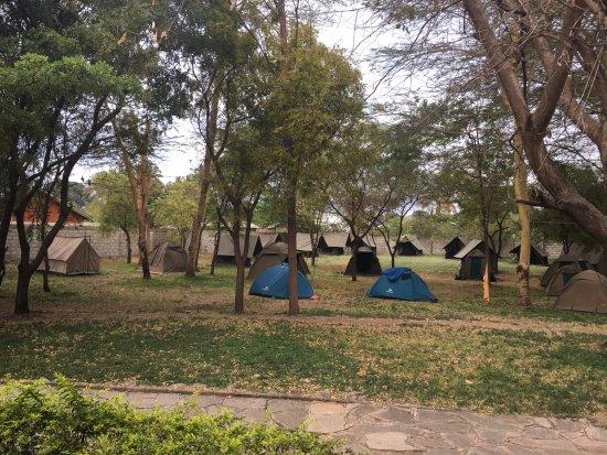 Jambo Lodge: camp