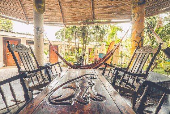 Pura Vida Hostel Photo