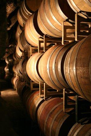 Murphys, Καλιφόρνια: Barrels in the Wine Cave