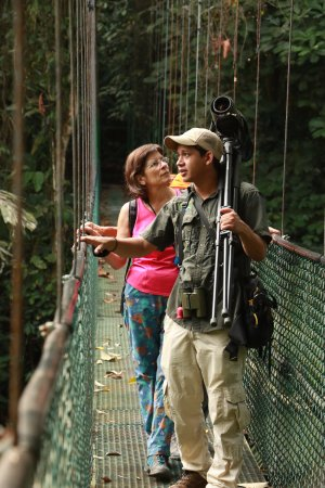 Tirimbina Biological Reserve: Birding at Tirimbina.