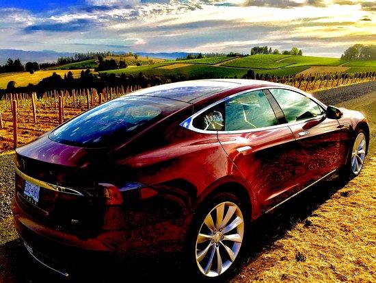 Tesla Tours
