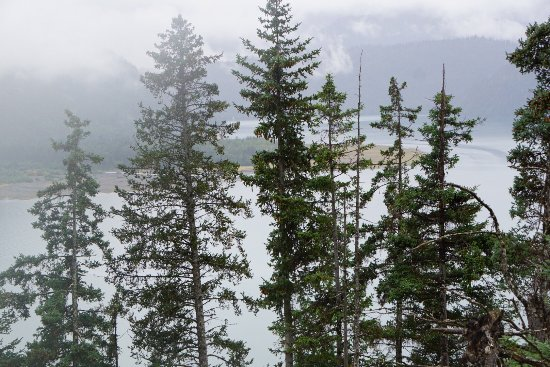 Kachemak Bay State Park: photo3.jpg