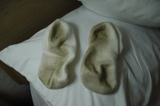 These are my socks after an overnight stay...