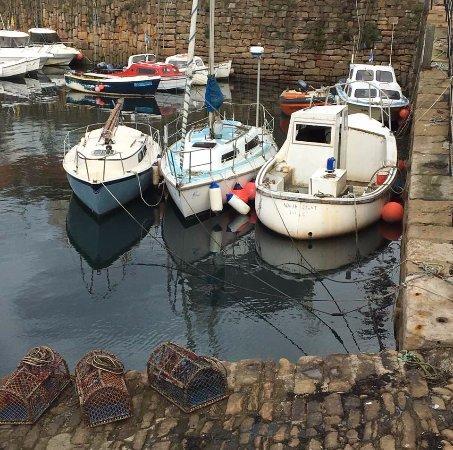 Fife, UK: Crail harbour.