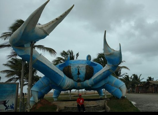 Belmonte, BA: Gaiamun Gigante