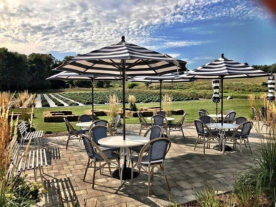 Brys Estate Vineyard & Winery : photo1.jpg