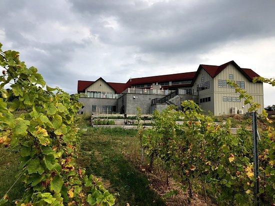 Traverse City Wine Tours Reviews