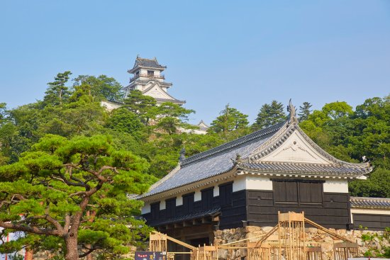 Kochi Prefecture, Japan: Kochi Castle