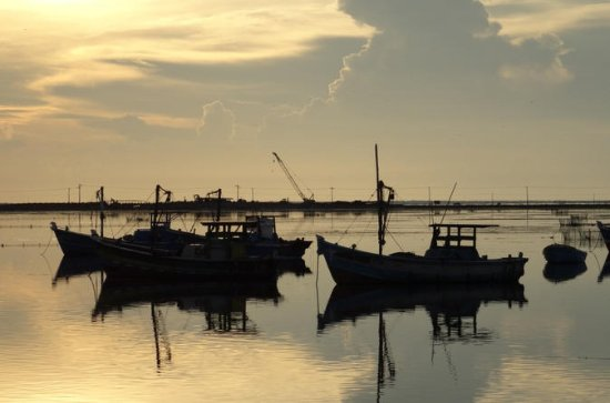 Private Day Tour: Lagoon Fishing in Negombo