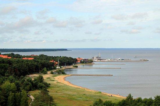 Excursion d'une journée de Vilnius au...