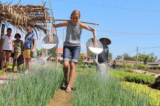 Become a Farmer at Tra Que Vegetable ...
