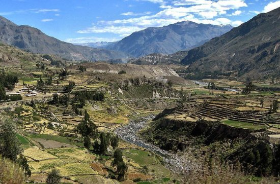 Canyon de Colca: circuit de 2 jours...