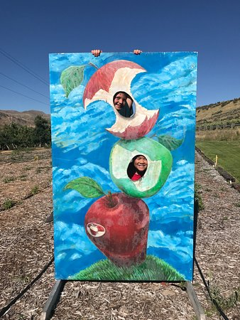 Orondo Cider Works: Fun!