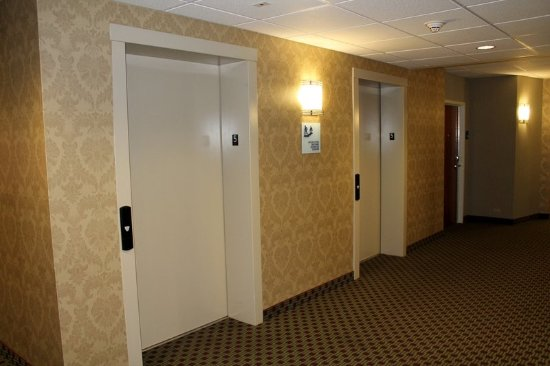 Holiday Inn Express & Suites - Harrisburg West: Elevator Lobby