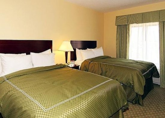 Holiday Inn Express & Suites - Harrisburg West: Suite