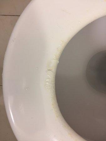 Copthorne Hotel Auckland City: Unacceptable Toilet Seat