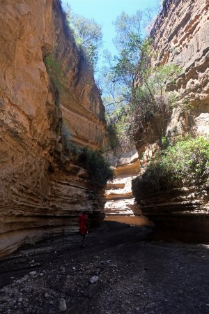 Hell's Gate National Park 사진