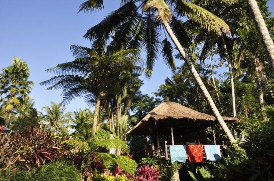 Villa Orchid Bali Picture