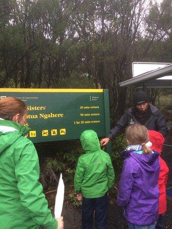 Waipoua Forest, New Zealand: photo0.jpg