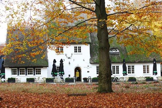 Zelandia, Dinamarca: efterår i dyrehaven