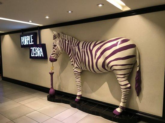 Казино зебра что такое сайт рулетка