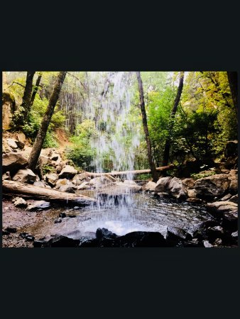 Cedar Lodge Motel: Hedgecreek falls