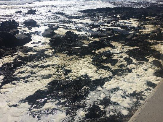 Κόλπος Bantry, Νότια Αφρική: Grey Waters in Bantry Bay - Sea Point