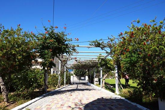 Merabello Apartments: The villa enterance
