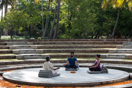 Shreyas Yoga Retreat: Meditation session in the amphitheatre