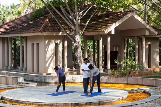 Shreyas Yoga Retreat: Yoga session in the Amphitheatre