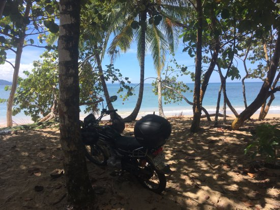Punta Uva, Κόστα Ρίκα: The nicest beach in the region. Rent a motorcycle in Puerto Viejo, its an easy 15min ride.