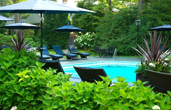 Cape Arundel Inn & Resort: Our pool is an oasis for vacationers