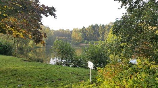 Quickborn, Almanya: Very green and calm location. Beautiful lake.
