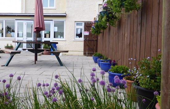 Newport -Trefdraeth, UK: The patio