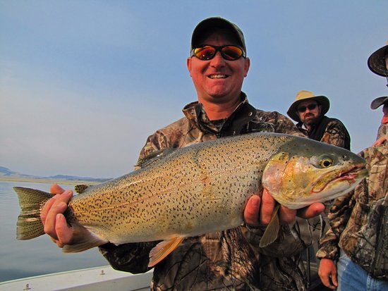Getlstd property photo picture of fishhead outdoors for Colorado fishing guide