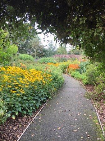 Breezy Knees Gardens: photo0.jpg