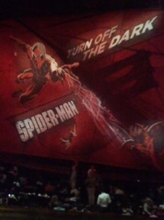 Foto de Spider-Man: Turn Off the Dark